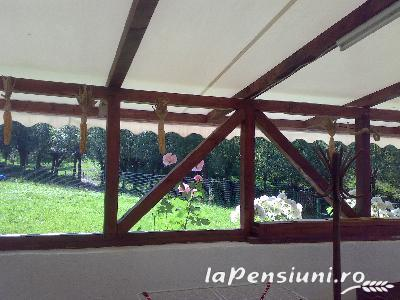 Pensiunea Ana - accommodation in  Muscelului Country (06)