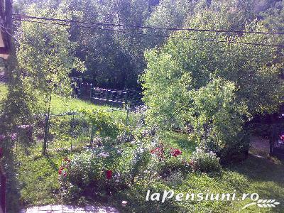 Pensiunea Ana - accommodation in  Muscelului Country (07)