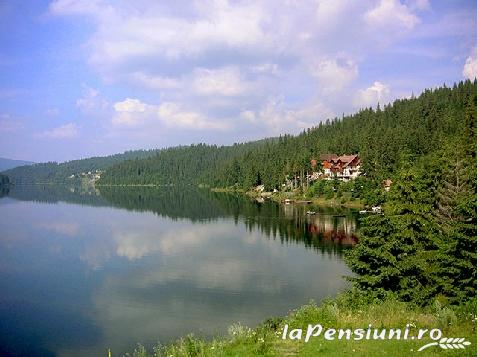 Pensiunea Doru - accommodation in  Apuseni Mountains, Belis (Surrounding)