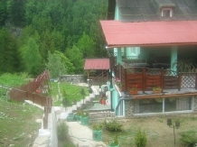 Pensiunea Sarah - accommodation in  Hateg Country (01)