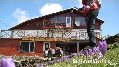 Cabana Rustic - accommodation in  Hateg Country, Straja (01)