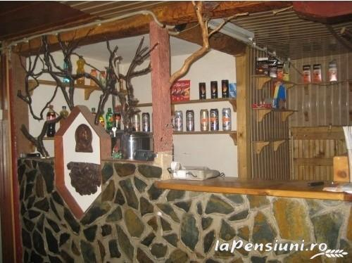 Cabana Rustic - accommodation in  Hateg Country, Straja (05)