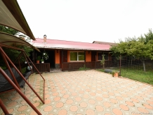 Pensiunea Belvedere - accommodation in  Hateg Country (12)