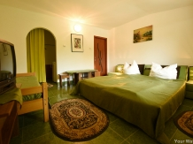 Pensiunea Belvedere - accommodation in  Hateg Country (13)