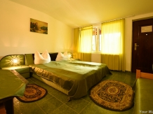 Pensiunea Belvedere - accommodation in  Hateg Country (14)