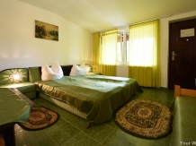 Pensiunea Belvedere - accommodation in  Hateg Country (15)