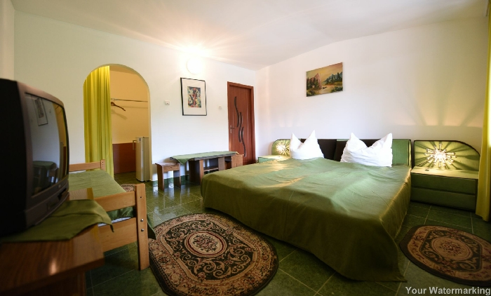 Pensiunea Belvedere - accommodation in  Hateg Country (16)