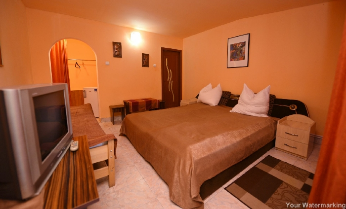 Pensiunea Belvedere - accommodation in  Hateg Country (20)