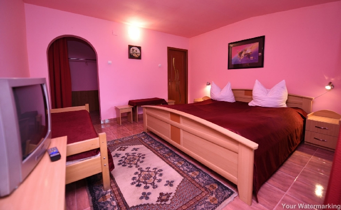 Pensiunea Belvedere - accommodation in  Hateg Country (22)