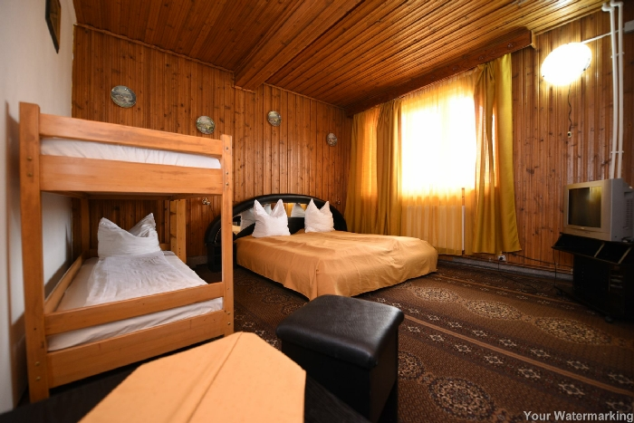 Pensiunea Belvedere - accommodation in  Hateg Country (33)