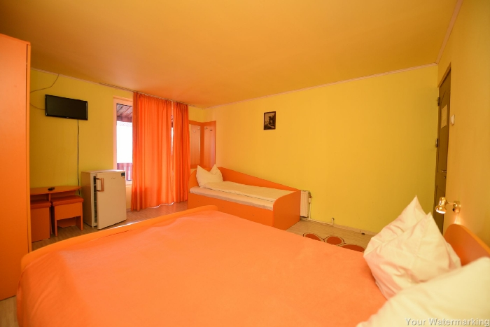 Pensiunea Belvedere - accommodation in  Hateg Country (41)