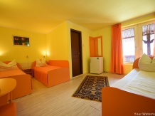 Pensiunea Belvedere - accommodation in  Hateg Country (47)
