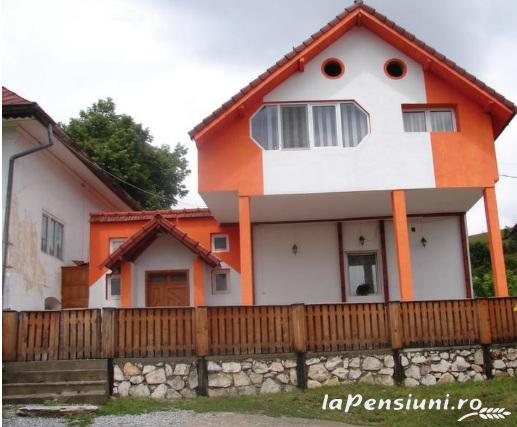 Pensiunea Anidor - accommodation in  Hateg Country (01)