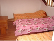 Pensiunea Anidor - accommodation in  Hateg Country (10)