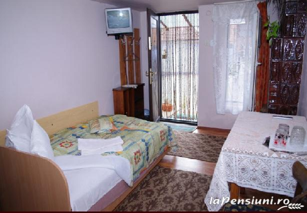 Pensiunea Irina - accommodation in  Hateg Country (02)