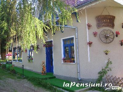 Pensiunea Casa Albastra - accommodation in  Apuseni Mountains, Belis (01)