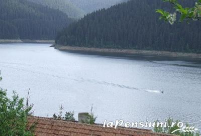Pensiunea Casa Albastra - accommodation in  Apuseni Mountains, Belis (03)