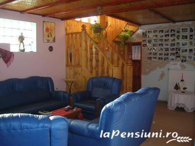 Pensiunea Casa Albastra - accommodation in  Apuseni Mountains, Belis (07)