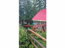 Cabana Brandusa - accommodation in  Hateg Country, Transalpina (02)