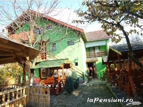 Pensiunea Iona - accommodation in  Maramures Country (03)