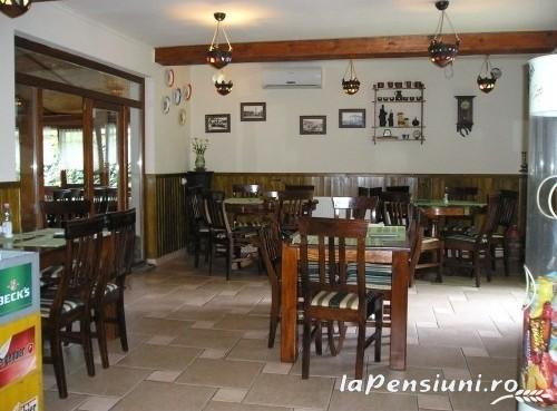 Pensiunea Iona - accommodation in  Maramures Country (11)