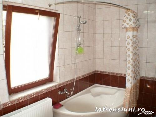 Pensiunea Sorina - accommodation in  Maramures Country (02)