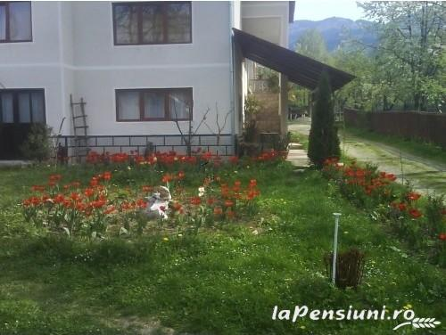Pensiunea Sorina - accommodation in  Maramures Country (05)