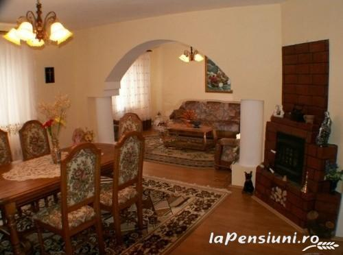 Pensiunea Sorina - accommodation in  Maramures Country (08)