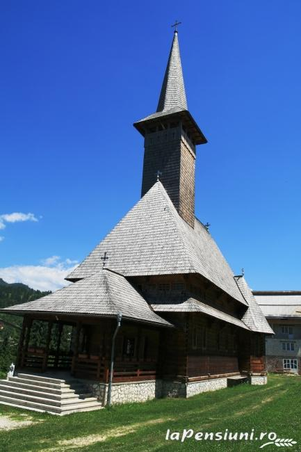 Vila Capsunica - accommodation in  Maramures Country (Surrounding)
