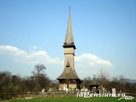 Pensiunea Amethyst - accommodation in  Maramures Country (Surrounding)