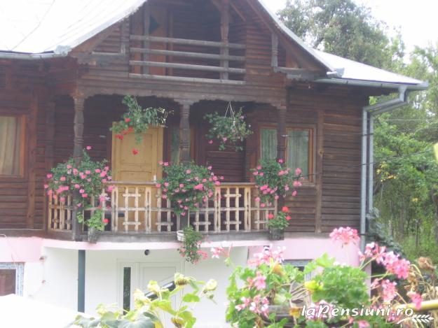 Pensiunea Calix - accommodation in  Olt Valley (01)