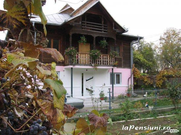Pensiunea Calix - accommodation in  Olt Valley (06)