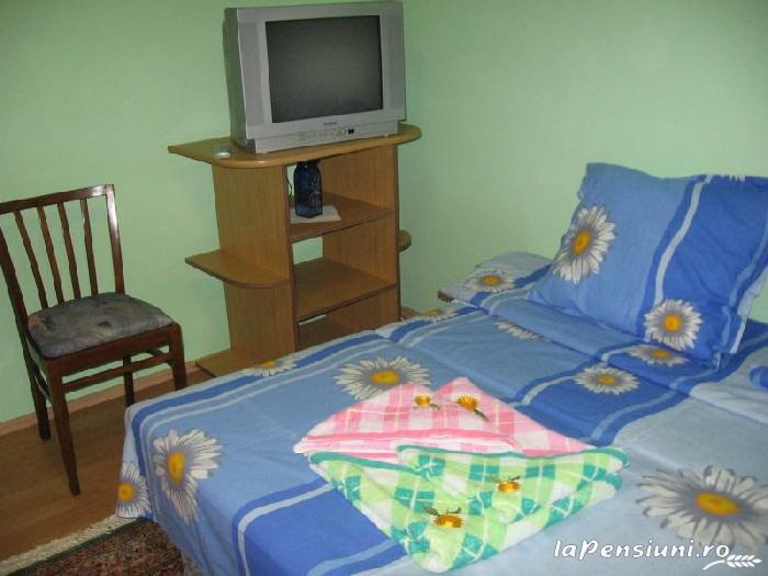 Pensiunea Calix - accommodation in  Olt Valley (08)