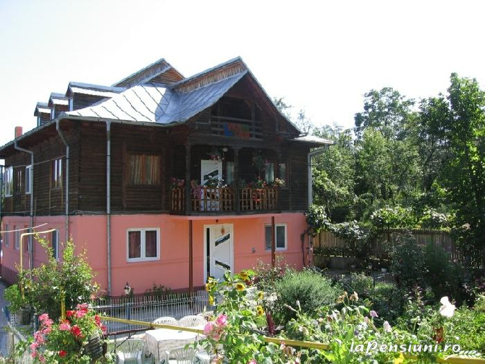 Pensiunea Calix - accommodation in  Olt Valley (09)