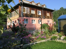 Pensiunea Calix - accommodation in  Olt Valley (10)
