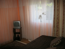 Pensiunea Calix - accommodation in  Olt Valley (15)