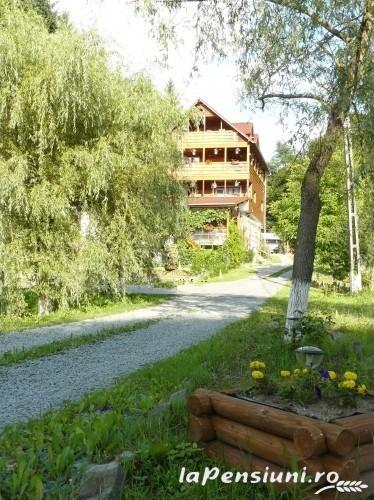 Pensiunea Smarald - accommodation in  Maramures Country (03)