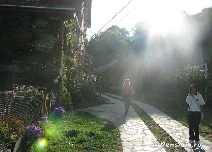 Pensiunea Smarald - accommodation in  Maramures Country (08)