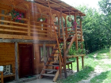 Cabana Victor - accommodation in  Maramures Country (03)