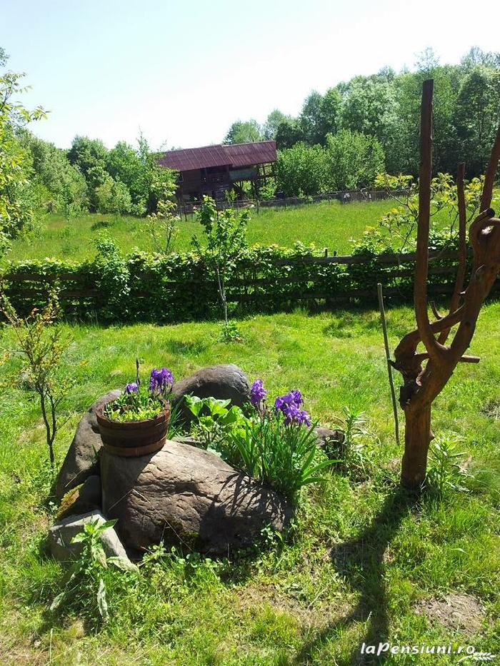Cabana Victor - accommodation in  Maramures Country (04)