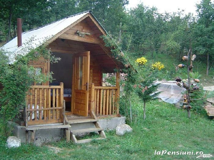 Cabana Victor - accommodation in  Maramures Country (05)