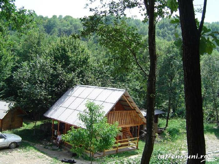 Cabana Victor - accommodation in  Maramures Country (10)