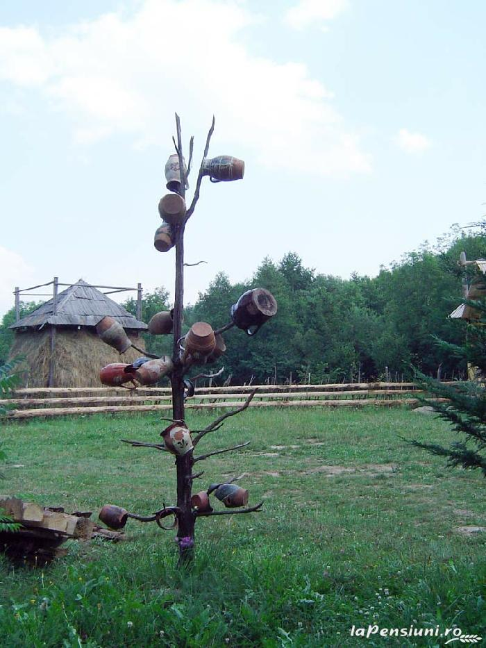 Cabana Victor - accommodation in  Maramures Country (14)