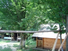 Cabana Victor - accommodation in  Maramures Country (20)