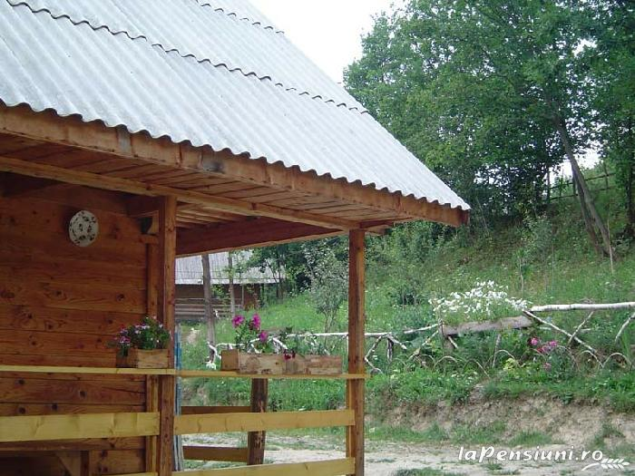 Cabana Victor - accommodation in  Maramures Country (21)
