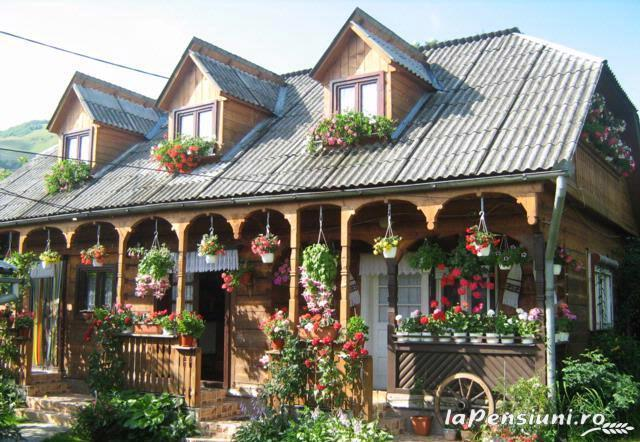 Pensiunea Irina - accommodation in  Maramures Country (02)