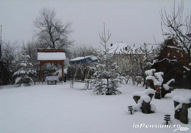 Pensiunea Irina - accommodation in  Maramures Country (04)