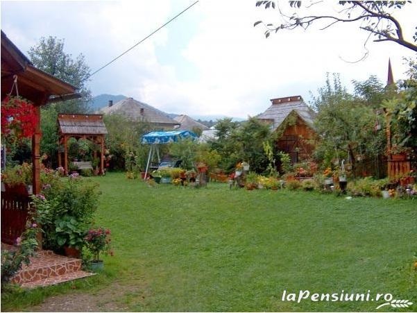 Pensiunea Irina - accommodation in  Maramures Country (06)
