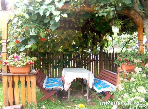 Pensiunea Irina - accommodation in  Maramures Country (08)