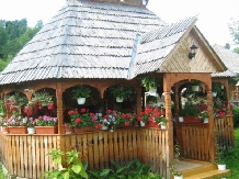 Pensiunea Irina - accommodation in  Maramures Country (13)